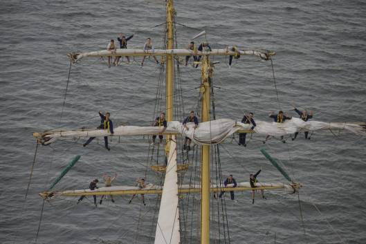 regata-marilor-veliere-2